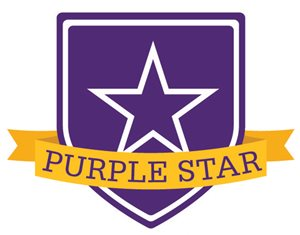 Medina High School Receives 2019 Purple Star Designation