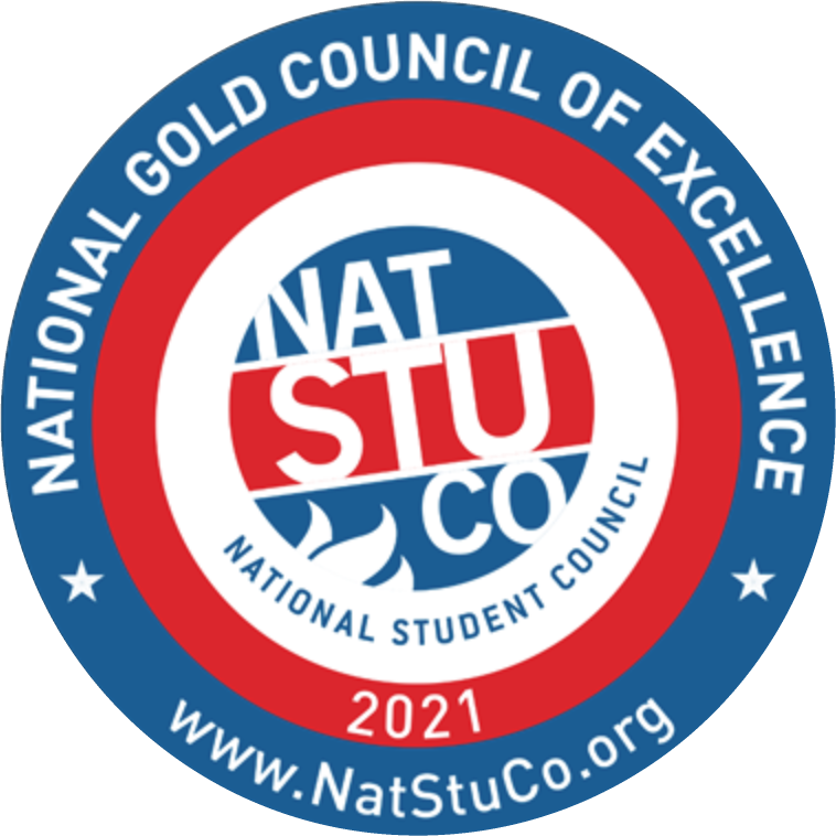 Medina High School Student Council Receives National Council of Excellence Gold Award for the 9th Year Running