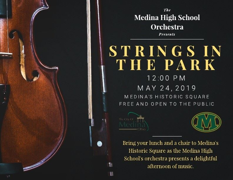 Mark Your Calendars:  Medina High School Strings in the Park